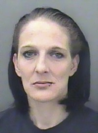 Photo of Vicky Cherry, a middle-aged woman with pale skin and straight brown chin-length hair.