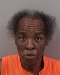 Photo of Kathryn Ashe. She is a middle-aged African-American woman with dark brown skin and frizzy, graying black hair. She is wearing a bright orange T-shirt and looks like she was photographed while she was talking.