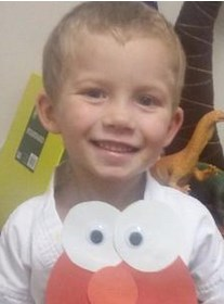 Photo of a small boy with blond hair, smiling for the camera, wearing an Elmo T-shirt.